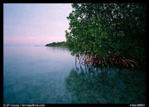 "Biscayne National Park, Florida, Whose Story Was Told in Part Six of ""The National Parks"""